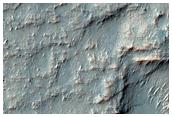 Phyllosilicate Ring in Terra Sirenum