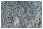 Crater Floor and Rim