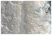 Polygonal Veins in Robert Sharp Crater