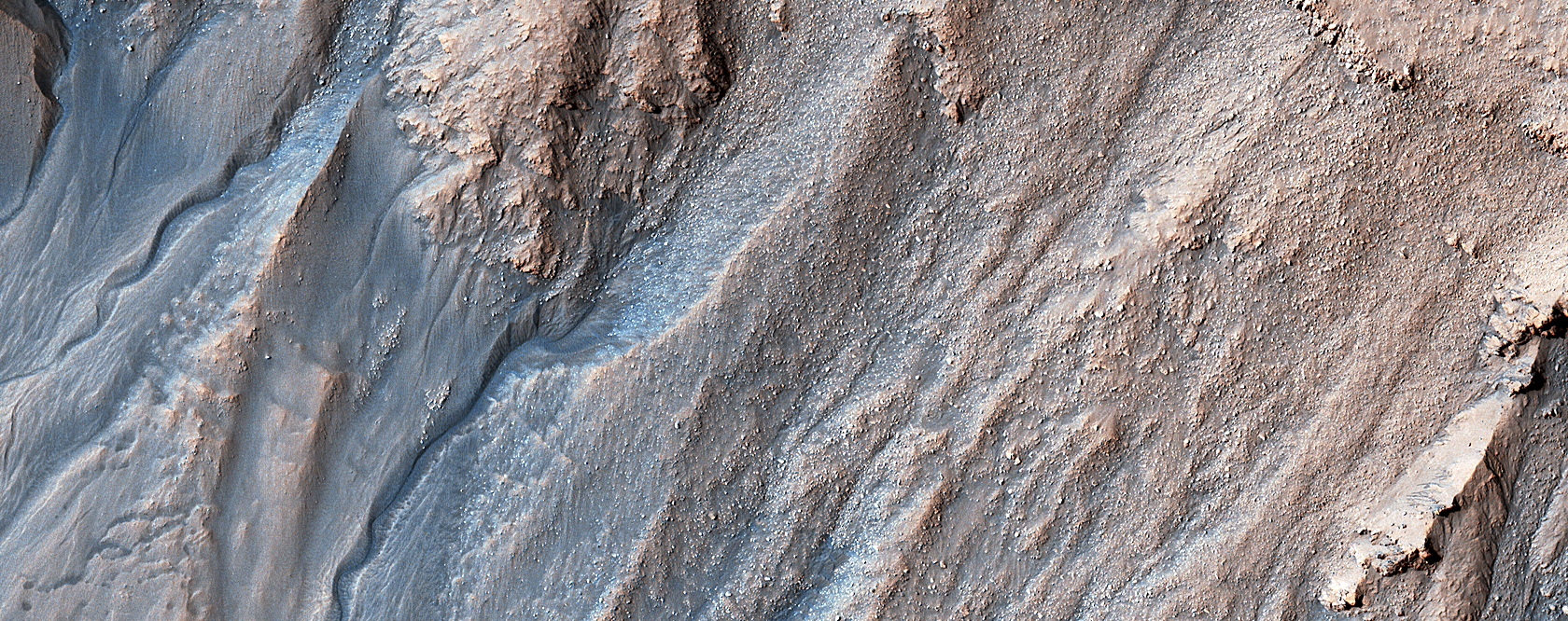 Multi-Elevation Gullies