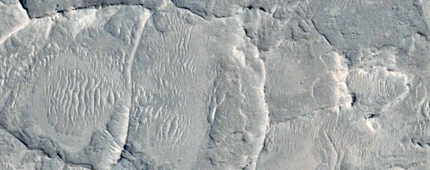 Narrow Ridges in Meridiani Planum