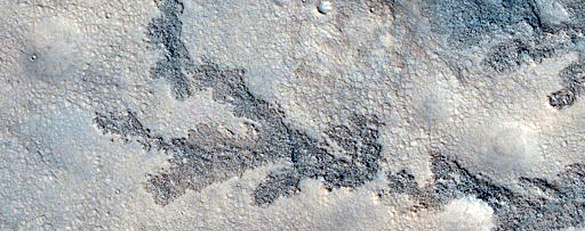 Branched Features within Antoniadi Crater