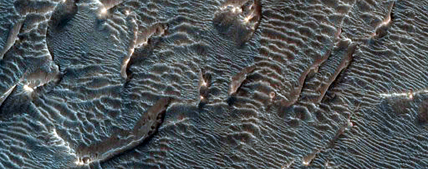 Dark Dunes and Aeolian Units in Melas Chasma