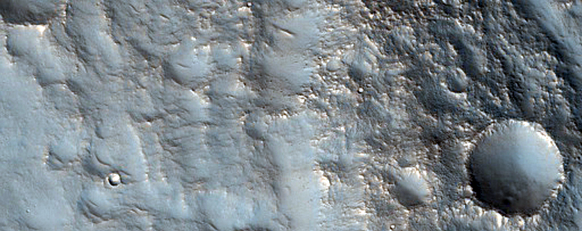 Terrain in Utopia Planitia