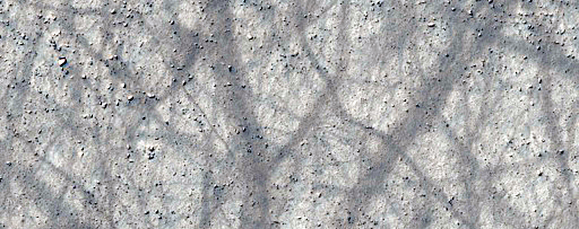 Monitoring Dust Devil Tracks in Terra Cimmeria