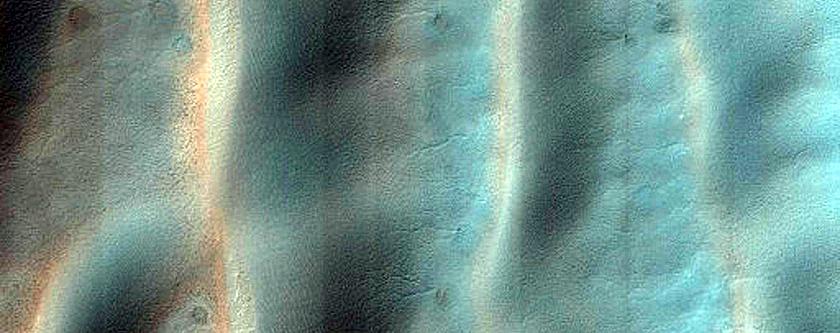 USGS Dune Database Entry Number 1851-675 Monitoring