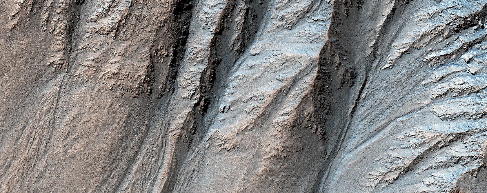 Complex Gullies in a Crater