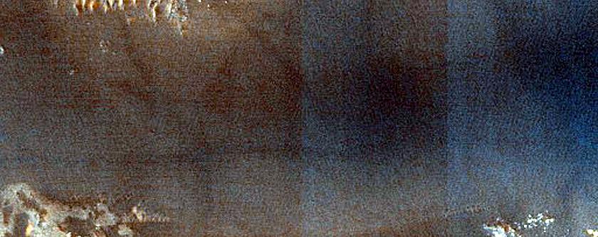 Lobo Vallis Dune Monitoring