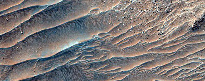 Large Lobate Flow Feature in Nereidum Montes