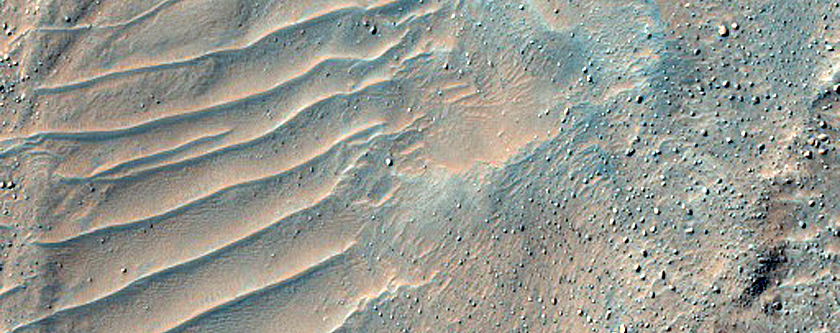 Large Lobate Flow Feature in Nereidum Montes