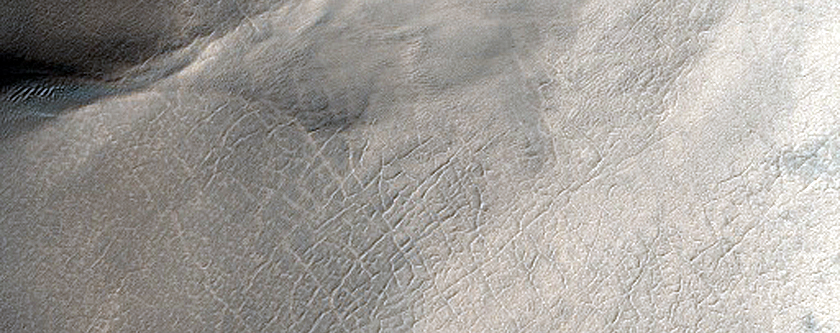 Gullies in Sisyphi Cavi