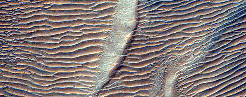 Gullies and Lobate Flow Feature in Nereidum Montes