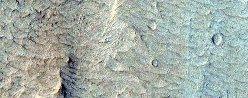 Floor of Nicholson Crater