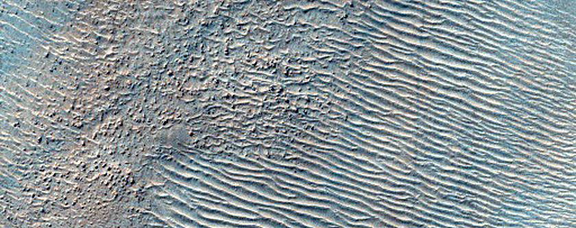 Dust-Raising Event and Streak Monitoring in Argyre Planitia
