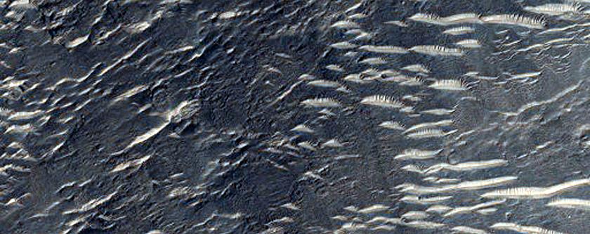 Landforms East of Isidis Region