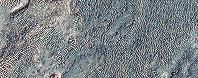 Northwestern Rim of Roddy Crater