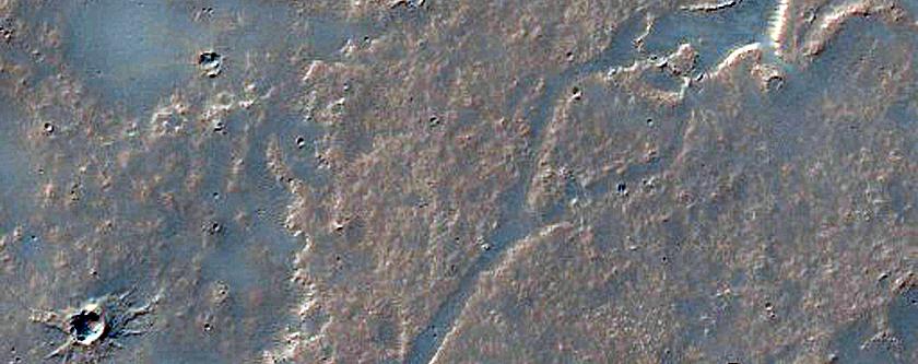 Small Scale Lava Flow Morphology in Daedalia Planum