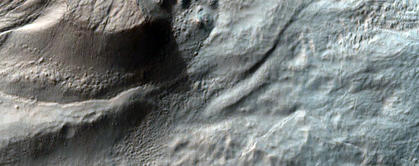 Gullies and Flow Features in Nereidum Montes