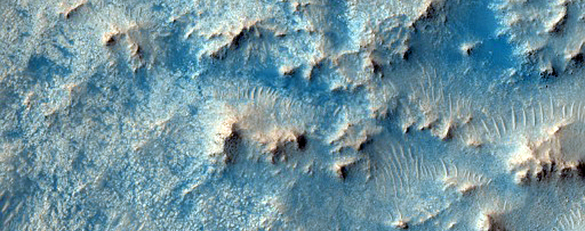 Channel Dune Monitoring North of Jezero Crater