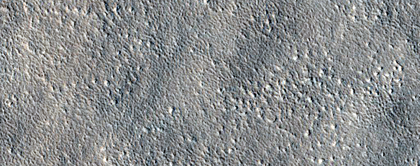 Candidate Landing Site for SpaceX Starship Near Arcadia Planitia