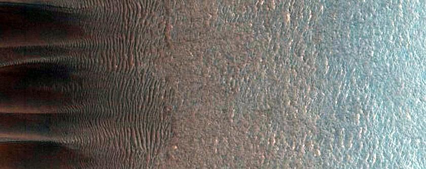 Western Abalos Scopuli Scarp and Dune Monitoring