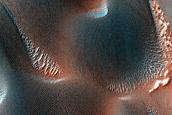 USGS Dune Database Entry Number 2467-525