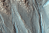 Gully Monitoring in Terra Sirenum