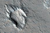Region Near Olympus Mons