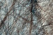 USGS Dune Database Entry Number 1714-733