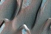 Herschel Crater East Dune Monitoring