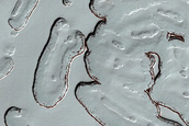 South Polar Residual Cap Monitoring