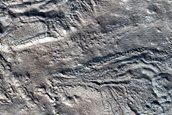 Large Polygons near Crater in Northwest Tempe Terra