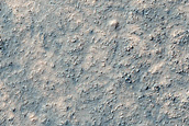 Olivine-Rich Crater Floor in Terra Sirenum