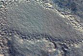 Concentric Crater Fill in Deuteronilus Mensae