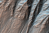 Complex Gullies in a Crater