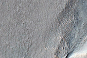 Gullies in Southern Mid-Latitude Crater