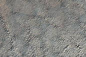 Possible Exposure of South Polar Layered Deposits