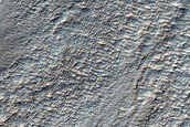 Gullies and Ridges in Mid-Latitude Southern Crater