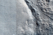 Variety of Brain Terrain near the East Rim of Moreux Crater