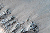 Gullies in Southern Mid-Latitude Crater near Newton Crater
