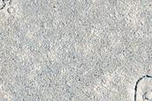 Lava-Draped Craters in Cerberus Palus