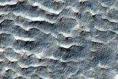 Gullies and Lobes in Crater in Terra Sirenum