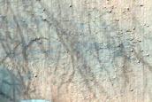 Terra Cimmeria Intracrater Barchan Dunes
