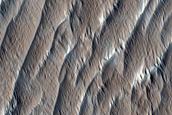 Terrain South of Olympus Mons