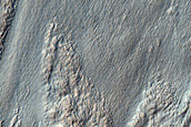 Gullies on Outer Crater Wall in Nereidum Montes