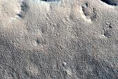 Unit Margin in Utopia Planitia