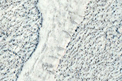 Rafts of Lava in Northern Mid- Latitudes