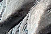 Gullies Near Wirtz Crater