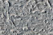 Terrain Sample