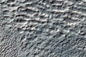 Equator-Facing Gullies and Crater Fill